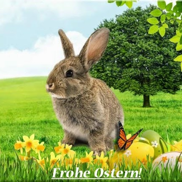 Easter holidays in nature